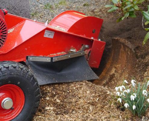 Stubbenfräse 850 bei der Baumstumpfentfernung